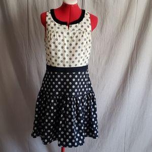 J. CREW Dress Size 6 Blue Beige Lined